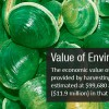 Environmental Benefits #3