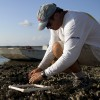 Introduction to the Lone Cabbage Oyster Reef Restoration Project