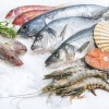 Seafood in the Diet-Benefits and Risks Webinar