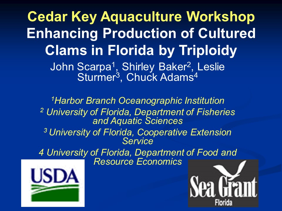 Enhancing Production of Cultured Clams in Florida by Triploidy PICTURE