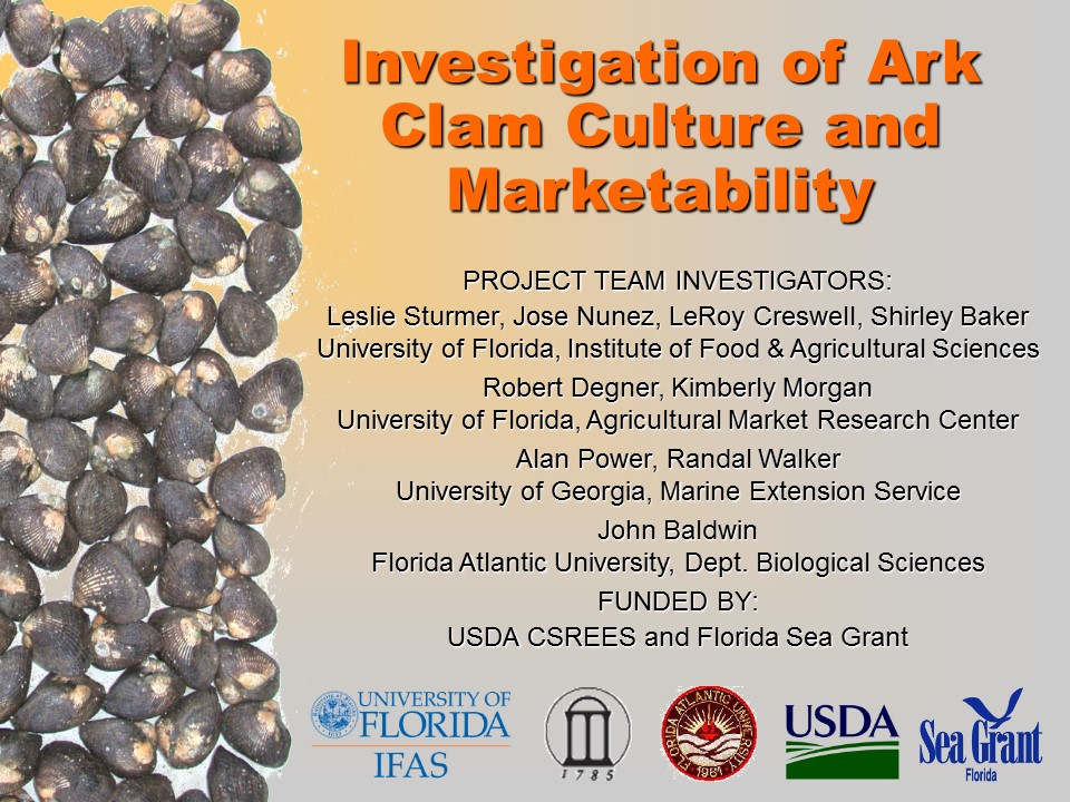 Investigation of Ark Clam Culture and Marketability PICTURE