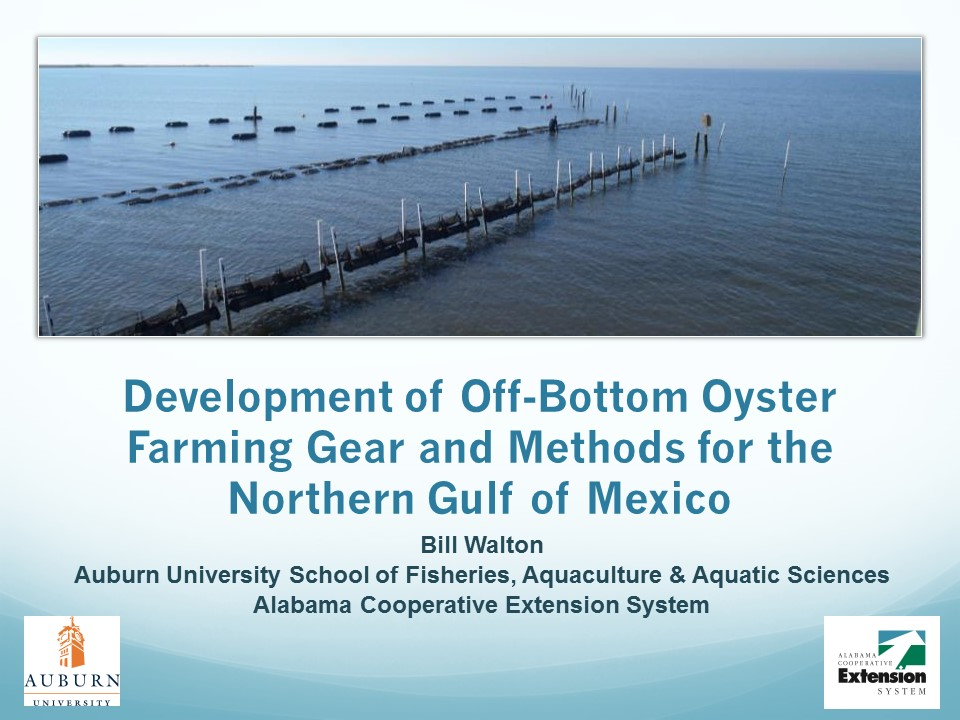 Off-bottom Oyster Culture Developed for the Gulf of Mexico PICTURE