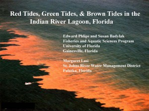 Red green and brown tides in IRL_presentation PICTURE