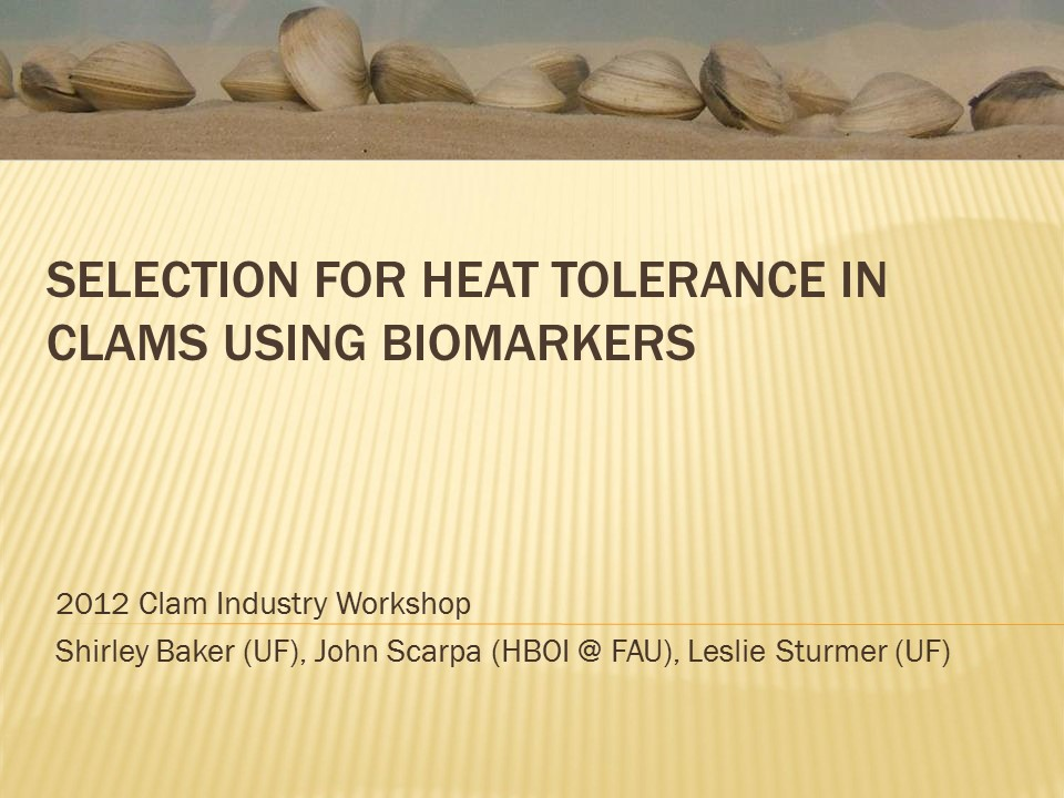 Selection for Heat Tolerance in Cultured Clams using Biomarkers PICTURE