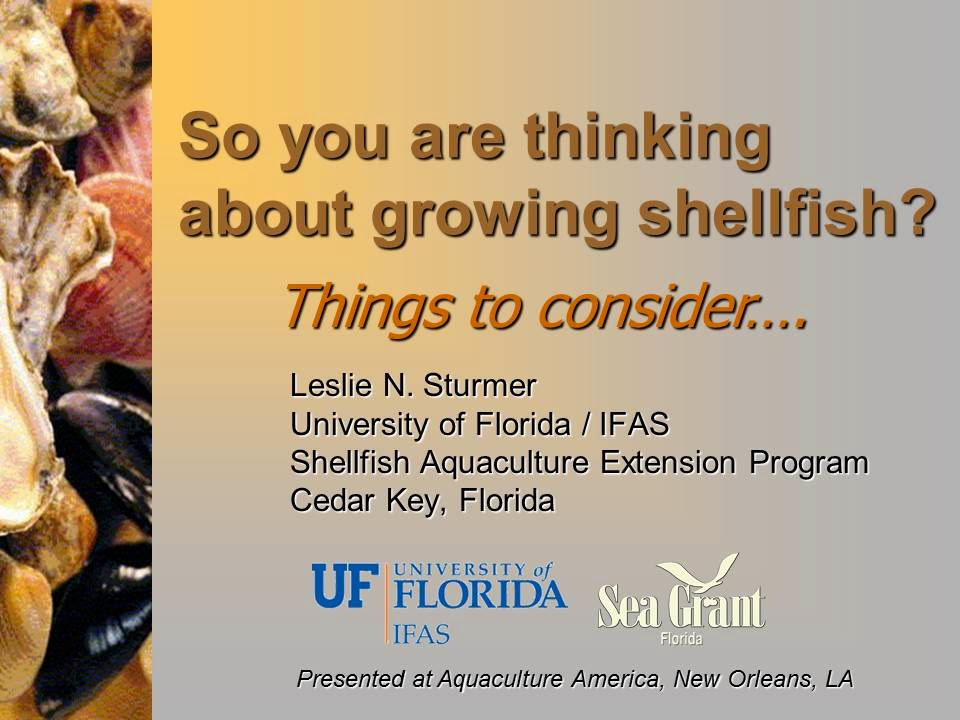 So you are thinking about growing shellfish? PICTURE