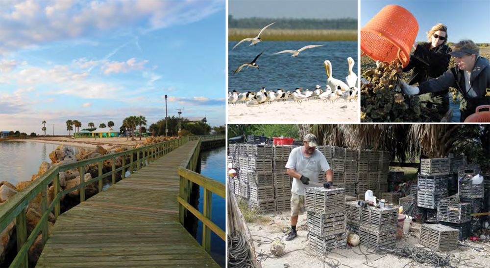 Big Bend Shellfish Trail - Florida Shellfish Aquaculture
