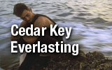Cedar Key Everlasting
