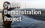 Oyster Demonstration Project