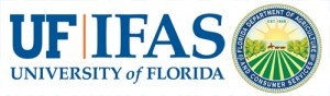 IFAS2013
