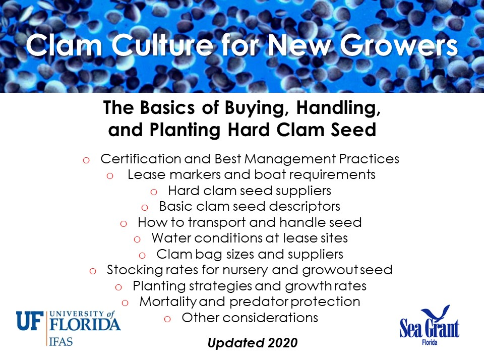 The Basics of Buying, Handling, and Planting Clam Seed PICTURE