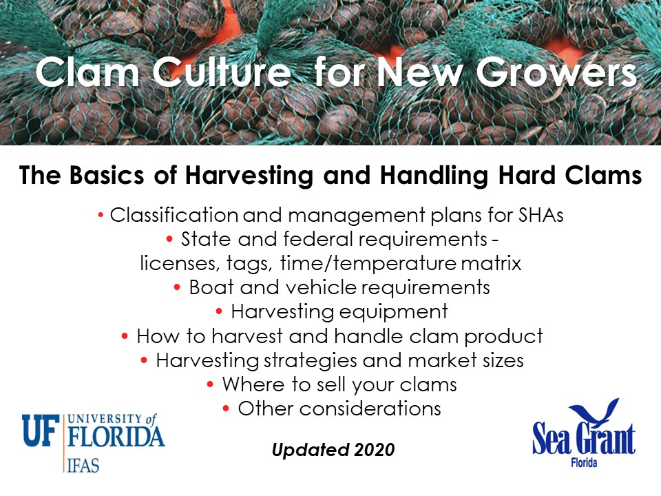 The Basics of Handling, Harvesting, and Selling Clams PICTURE
