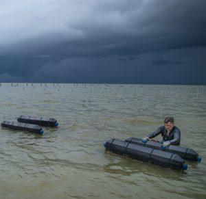 Hurricane Preparedness Guides for Off-bottom Oyster Culture